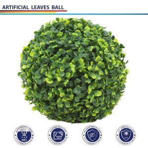 Ivy Ball