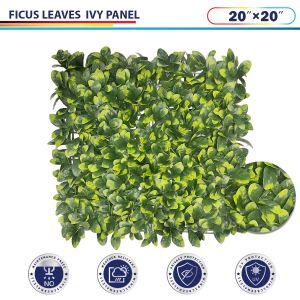 Ficus Ivy Panel