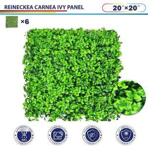 "Windscreen4less Artificial Faux Ivy Leaf Decorative Fence Screen 20"" x 20"" Reineckea carnea 6pcs"